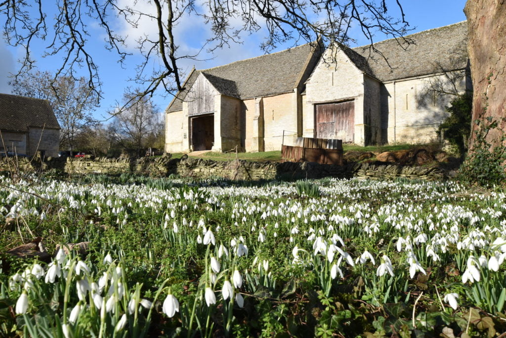 Welcome Spring time in the Cotswolds